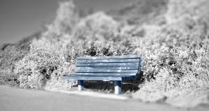 Blue Bench-BFR